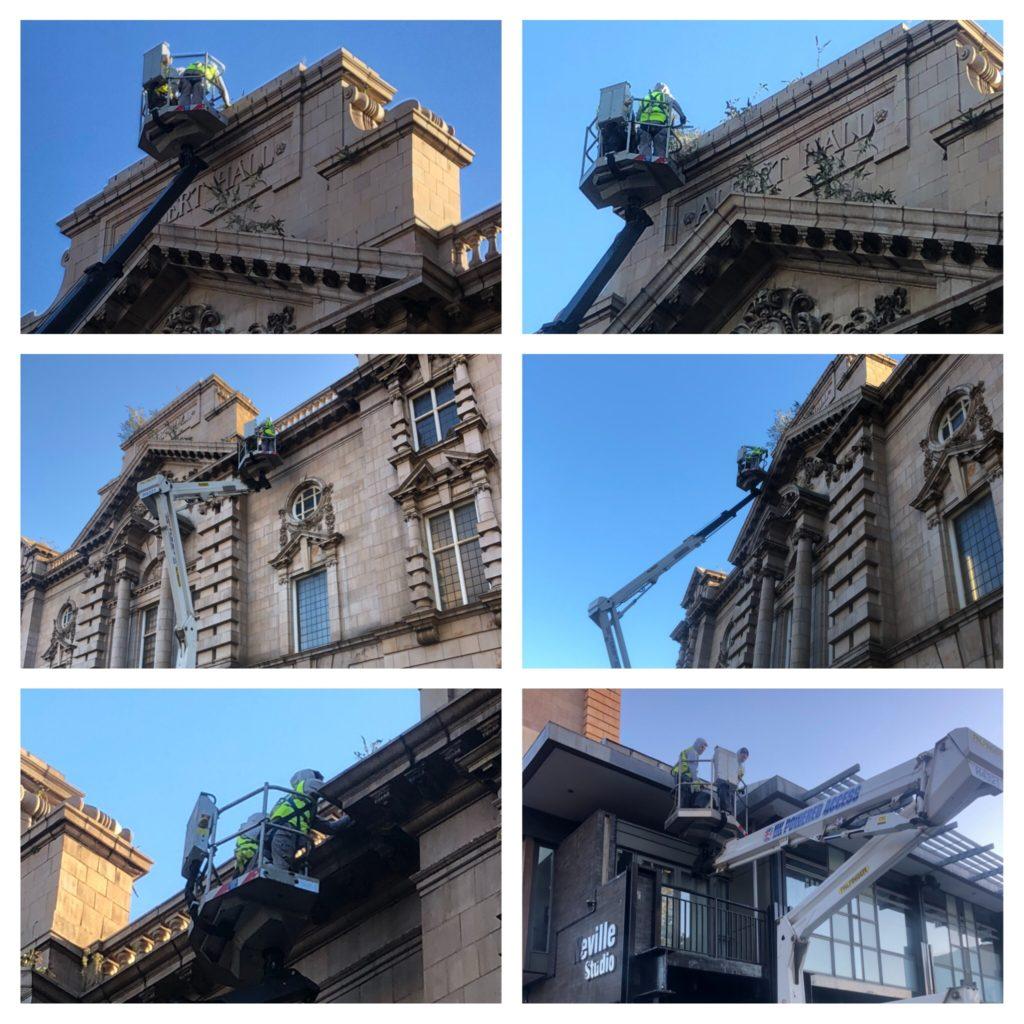 IMG 2383 1024x1024 - Removing unwanted vegetation from the Albert Hall Nottingham